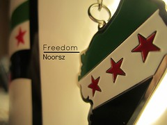 freedom to syria (Noor sz) Tags: freedom syria   freesyria