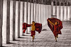 Flying Monks (Artypixall) Tags: monochrome blackwhite burma running getty myanmar bagan faa shwezigonpagoda selectivecolors youngbuddhistmonks