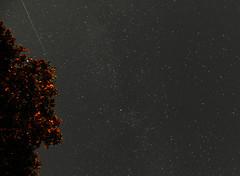 Perseid Meteor II (Wolfram Burner) Tags: stem education steam physics academics