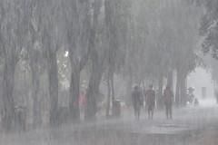 Water wall (Silvana *_*) Tags: storm rome roma water rain acqua pioggia temporale