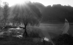 pioggia di luce (mat56.) Tags: trees light sun lake alberi lago landscapes lucca toscana antonio sole paesaggi luce garfagnana controluce sunbeams raggi bachlight gramolazzo mat56 romei minucciano
