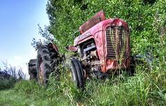 Traktor efterladt - HDR (Sir. Jensen) Tags: old tractor abandoned traktor decay rusty deserted hdr tracteur trattore trecker trekker traktori abandonedmachinery abandonedtractor rustyoldtractor nikond7000hdr