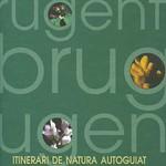 Llibres Capafonts004 copia