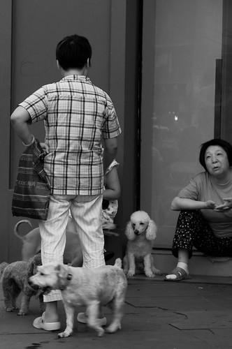 Yu Yuan, Shanghai