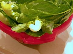Couve do amor * The love cabbage (♥ Reino Já Cheguei ♥) Tags: love heart amor cabbage coração couve reinojacheguei
