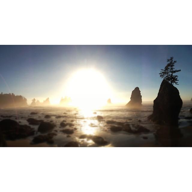 Sunbomb images