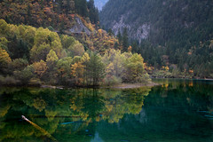 4214 The many hues of Jiuzhaigou--Sichuan Province , China (ngchongkin) Tags: china sichuan jiuzhaigou autofocus beautifulearth f