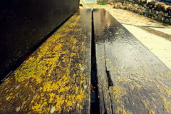 Bancos de otoño (Ferny Carreras) Tags: wood old autumn wet rain yellow rural bench lluvia madera agua banco amarillo otoño catalunya viejo aigua banc fusta groc boi pirineos pirineus tardor lleida mojado pyrinees mullat liquenes vello valldeboi plutja