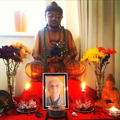 Carol's home shrine, Croydon, England.                 Hi, Please find attached a photo of my own home shrine, bathed in red for metta.    Carol xx  May our mind become Buddha, May our thought become Dharma, May our communication with one another be Sangh