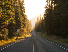 Highway in Washington at Sunset (andreaskoeberl) Tags: road street autumn trees sunset usa fall yellow gold vanishingpoint washington nikon highway glow unitedstates line asphalt 70200 organe goldenhour d800 410 highway410 70200f8 nikond800 70200f28vrii