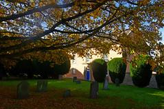 876-04L (Lozarithm) Tags: churchyards 1224 kx calne treesshrubs smcpda1224mmf40edalif justpentax pentaxzoom