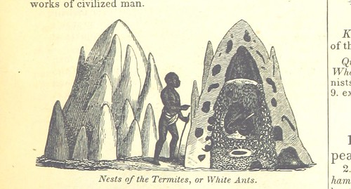 Image taken from page 71 of '[A System of Geography, for the use of Schools. Illustrated with more than fifty cerographic maps, and numerous wood-cut engravings.]'