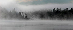 Grundy Misty Morning-1363 (RG Rutkay) Tags: morning family camping trees summer mist ontario nature weather fog sunrise landscapes provincialpark grundy grundylake twittertuesday