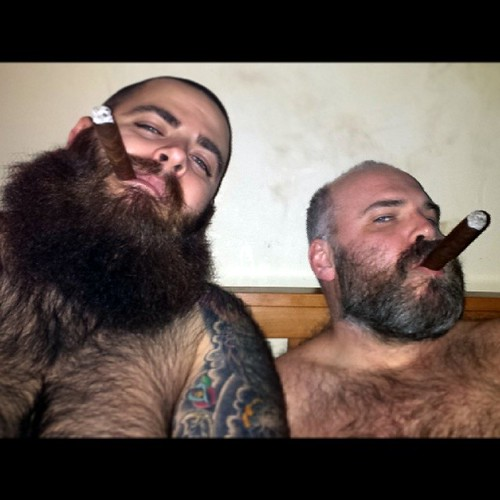 Cigar bears