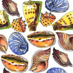 Seamless pattern, seashells (kana hata) Tags: seashells paintings watercolour