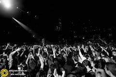 Mal_Palacio de los deportes 13_0356 (Juan The Fly Factory) Tags: madrid show de fly dvd los concert factory juan si gig concierto best bolo gira fajardo deportes palacio mal 81113 perezfajardo flyfactory theflyfactory maluoficial