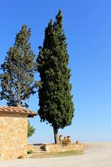 IMG_5853 (LopezMarc) Tags: tuscany pienza toscana toscane sanquirico rodellosso