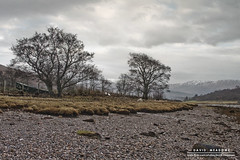 High and Dry (DMeadows) Tags: sea seaweed tree beach water rock stone rural fence landscape coast scotland countryside boat seaside rocks stones shoreline vessel shore coastline appin davidmeadows dmeadows davidameadows dameadows