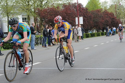 Herman Vanspringels Diamond 2014 (12)