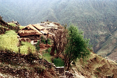 21-250 (ndpa / s. lundeen, archivist) Tags: nepal houses house mountain mountains color building film wall rural 35mm buildings village 21 nick hill hills stonewall mountainside nepalese thatchedroof 1970s hillside 1972 himalayas nepali dwellings dwelling dewolf mountainvillage thatchroof ruralvillage nickdewolf photographbynickdewolf ruraldwellings ruralnepal reel21 hillyregion