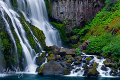 Middle McCloud Falls (jeandayphotography.com) Tags: california ca usa fern color water river landscape waterfall moss cascades mtshasta mccloud jeanday middlemccloudfalls wwwjeandayphotographycom