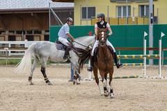 DSC05472_s (AndiP66) Tags: horse macro sports sport schweiz switzerland jumping sony july luzern sp di if juli alpha tamron concours pferd equestrian f28 solothurn ld horsejumping 70200mm wettbewerb 2014 springen kantonsolothurn balsthal springreiten cantonsolothurn wolhusen andreaspeters pferdespringen grueb martinameyer 77m2 a77ii ilca77m2 77ii 77markii slta77ii