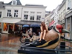 Den Bosch (milov) Tags: instagram phonecam motox fbme tweetme denbosch art sculpture bird publicart rain rainy umbrellas