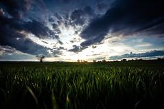 . (Vratislav Indra Art and Photography) Tags: vratislavindra photography landscape southmoravia czechrepublic sky drama agriculture
