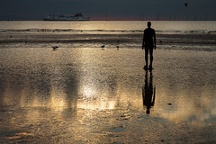 Ships That Pass By (cotswoldman) Tags: antonygormley anotherplace crosbybeach crosby formby formbypoint liverpool light silhouette statue sculpture coast colour colourlandscape contrejour landscape seascape seaside beach water gloucestercameraclub ship boat