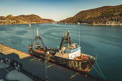 IMG_9300 (nl_mikeheffernan) Tags: boat ship harbour newfoundland stjohns atlantic ocean sea signalhill narrows tree road water canon downtown eastcoast