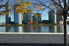 Pepsi Cola, Autumn Leaves (Four Freedoms Park/NYC) (chedpics) Tags: newyork rooseveltisland fourfreedomspark eastriver lindentree