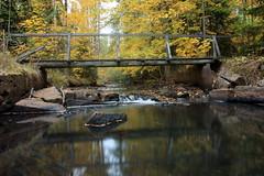 Bruzan en vacker hst dag! (mini_slugg) Tags: bruzan hst sweden sverige smland mariannelund autumn water vatten forest skog bro bridge