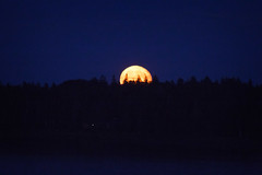 Deer Isle moonrise (Emily Miller Kauai) Tags: deerisle maine night blue ocean coast moon moonrise