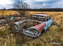 Progression (Pat Kavanagh) Tags: abandonedcars abandoned farm homestead prairies prairie rusting rusted farmersfield