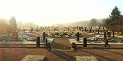 A frosty and misty morn (Jeannie Debs) Tags: frost mist italian gardens