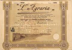 """""""L'AGRARIA"""" COOP. AGRICOLA ALESSANDRINA (scripofilia) Tags: 1910 agraria agricola alessandrina azioni cooperativa cooperativaagricola lagraria"""