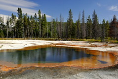 Emerald Pool (Funkomaticphototron) Tags: coryfunk emeraldpool yellowstone geothermal yellowstonenationalpark evening trees outdoors holiday vacation wy wyoming