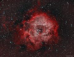 The Rosette Nebula (NGC 2237) (Martin_Heigan) Tags: rosettenebula widefield caldwell49 ngc2237 rgbhaoiii openstarcluster hydrogenalpha oxygeniii cls ha oiii narrowband lum sgp pi astronomy astrophysics astrograph telescope refractor 71mm wo williamoptics star71 f49 martin heigan astrophotography celestron avx nebula bicolor bicolour deepskyobject dso space science physics canon 60da mhastrophoto october2016 sequencegeneratorpro pixinsight astroimaging adobergb srgb deepsky 2016 astrometrydotnet:id=nova1789683 astrometrydotnet:status=solved 1stlight firstlight southernhemisphere amateurastronomy art wavelengthsoflight spectralline southafrica africa darkskies ngc2238 ngc2246 12mon ngc2252 ngc2239 ngc2244 emissionnebula electromagneticspectrumoflight