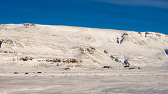 You can lose your mind (OR_U) Tags: 2015 oru iceland snow mountains horses houses winter widescreen 169 landscape blue bluesky