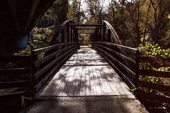 Bridge under a Bridge (jed52400) Tags: washington dc rockcreeknationalpark bridge bridges nature trail hdr