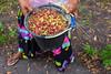 DSCF5012 (winnieyklai) Tags: spiceislands maluku moluccas indonesia ternate pulauternate cloves spicetrade clove
