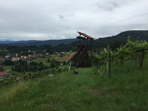 2016.07.03 114 Bad Gams Weinbergweg