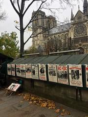 1611_02_Pariz_ 018 (Boris Nevrly) Tags: pariz rugby