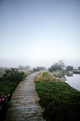 leading lines (almostsummersky) Tags: wood autumn epicsystemscorporation wooden mist campus fall verona garden morning shrubbery shrubs water boards boardwalk path wisconsin workplace sky fog epic greenery landscaping pond unitedstates us