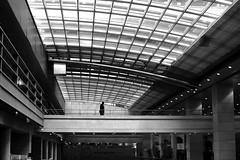 The sentinel (pascalcolin1) Tags: paris12 sentinelle sentinel homme man verre windows lumire light photoderue streetview urbanarte noiretblanc blackandwhite photopascalcolin