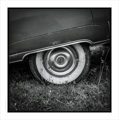 Where the rubber meets the .... grass (Gary Rowlands) Tags: atlantiqueroadtrip nouvelleaquitaine france blackandwhite monochrome hasselblad 110mm fe 203fe kodak hc110h quiberon cadillac rust vintagecar fuji acros100 zeiss