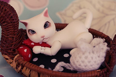Diablo (Lucy-Loves?) Tags: animal cat mouse doll crochet bjd diablo wong anthro camelliadynasty