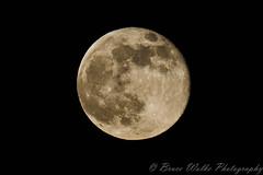 AZ Supermoon (Arizphotodude) Tags: nightphotography arizona moon night nikon desert moonlight nikkor ariz d7k d7000 sigma150500 nikond7000 brucewolke gilbertmeetup