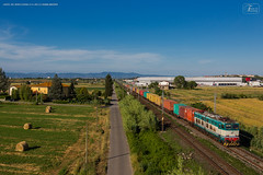 1018 - 655_411 + container a SAN ROMANO - CASTEL DEL BOSCO (PISA) 15-6-2013  FULL HD (SPECIALE CAIMANI XMPR) (Frank Andiver TRAIN IN TUSCANY) Tags: italy train canon frank photo italia photos rail trains tuscany rails locomotive toscana treno fs trenitalia treni 655 ferrovie binario caimano fullhd e655 andiver frankandiver trainintuscany