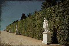 Dans les Jardins de Versailles (j. kunst) Tags: park sculpture france statue garden french ledefrance 17thcentury palace versailles hedge bar